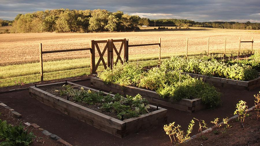 Princeton Farm Web 4 p